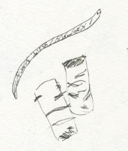 Francesca Woodman's Birch Sleaves
